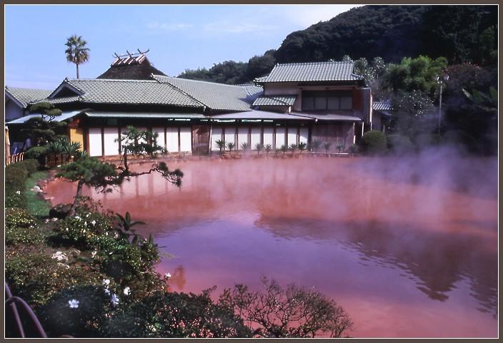 Японский пруд, полный крови